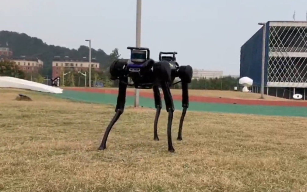 This robot dog learned how to get up after falling