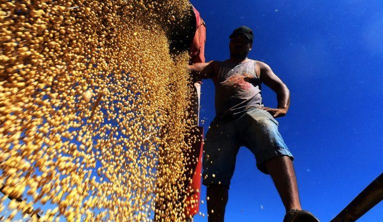 Brasil rumo a novo recorde de safra de grãos