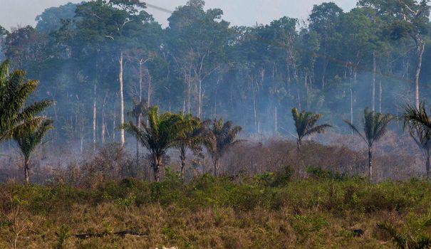 Amazon: Joe Biden coloca Bolsonaro sob pressão