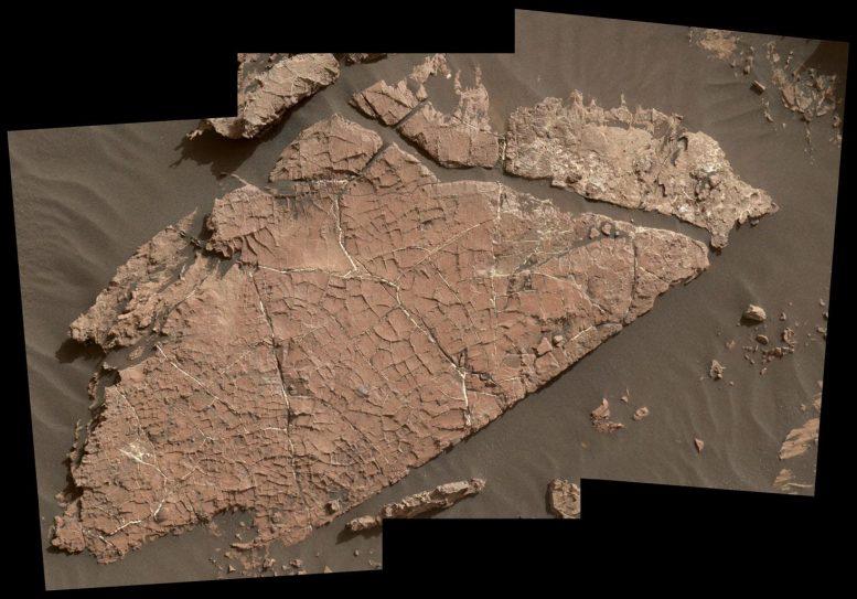 Old Soaked Mars Rock Board لوح