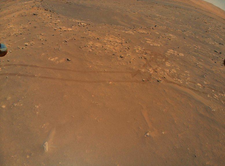 Perseverança Rover faixas em Marte