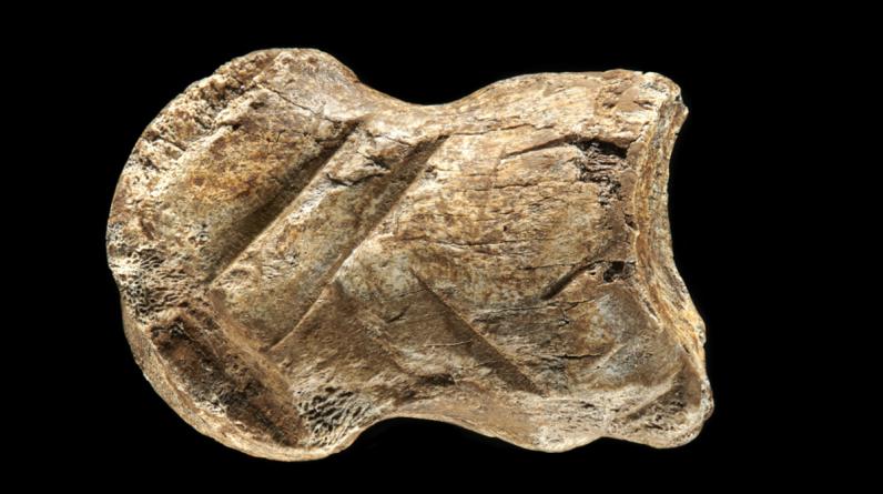 O entalhe do osso indica que os Neandertais tinham a capacidade de pensar simbolicamente