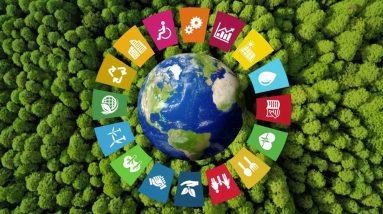 La Compétition Mondiale De Science Climatique A Deux Brésiliens En