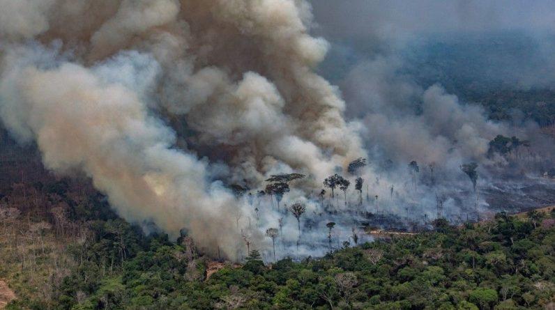 Brasil vai contratar mais autoridades ambientais para combater incêndios florestais