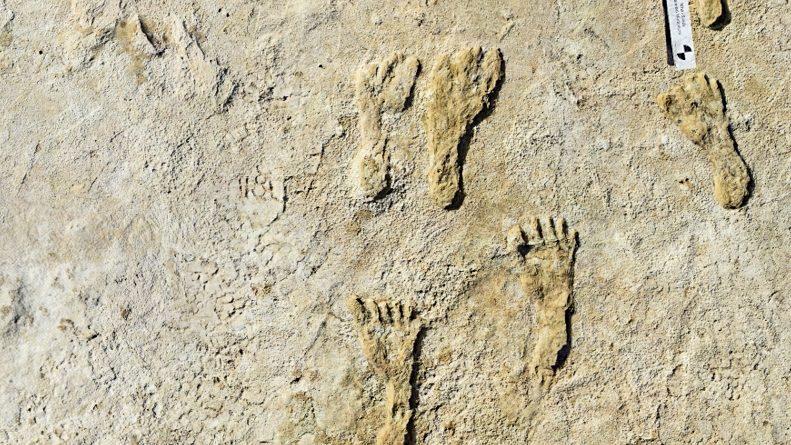 Mais antigas pegadas humanas encontradas na América do Norte, no Novo México |  notícias de ciência e tecnologia