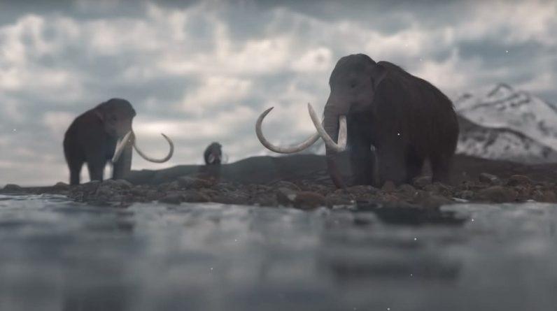 Estudo diz que a mudança climática matou mamutes peludos, não humanos
