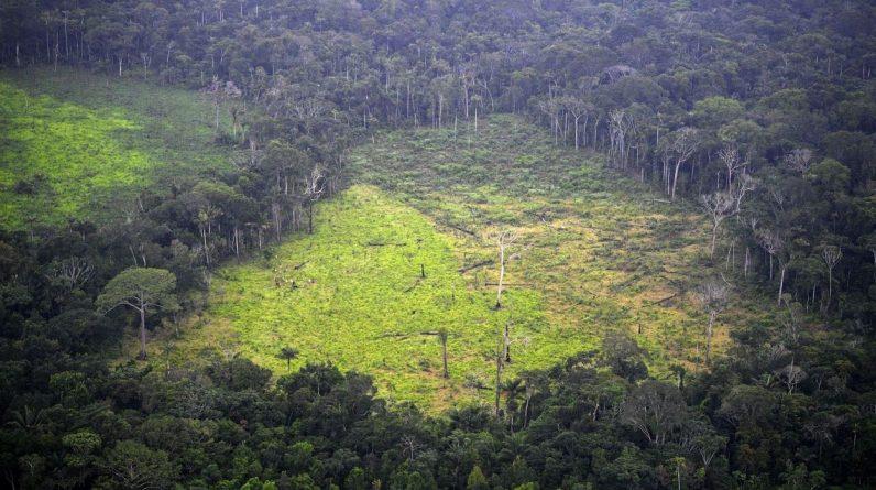 Brasil quer ter um debate 'honesto' sobre as reparações da Amazônia