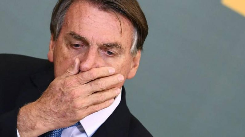 Desmatamento: uma denúncia de 'crime contra a humanidade' contra o Bolsonaro perante o Tribunal Penal Internacional