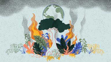 Mudança climática: e se a selva se voltasse contra nós?